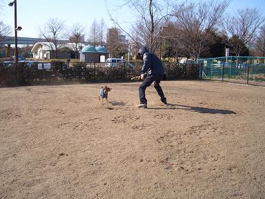 デジカメ画像☆ 783.JPG