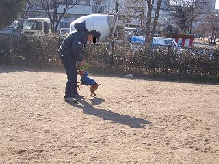 デジカメ画像☆ 784.JPG
